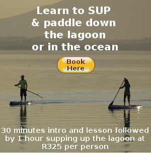 SUP in Hermanus